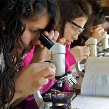students at microscopes