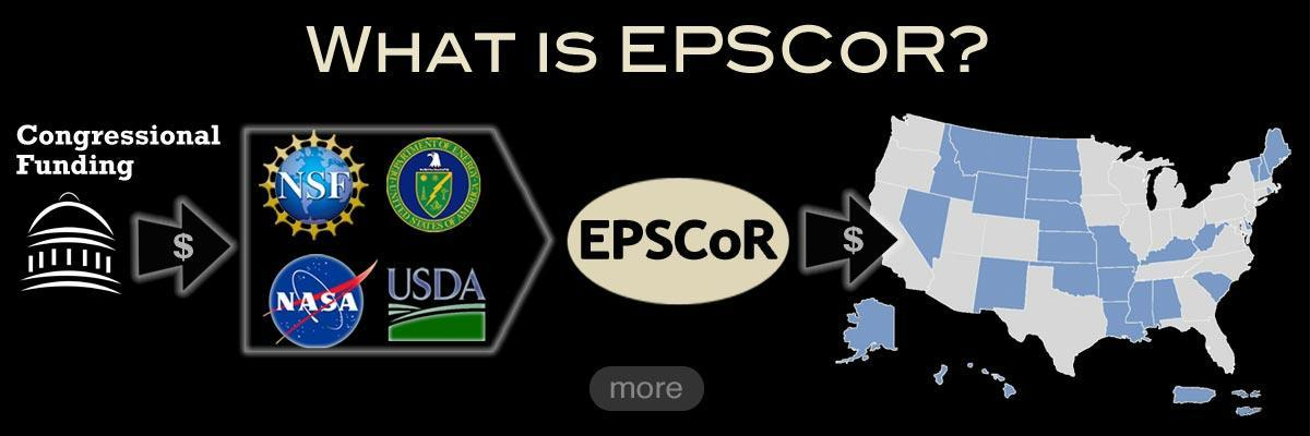 What is EPSCoR?